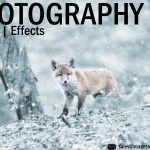 Photo Editing Effects services for Photographes